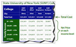 Cost of New York Schools Explanation